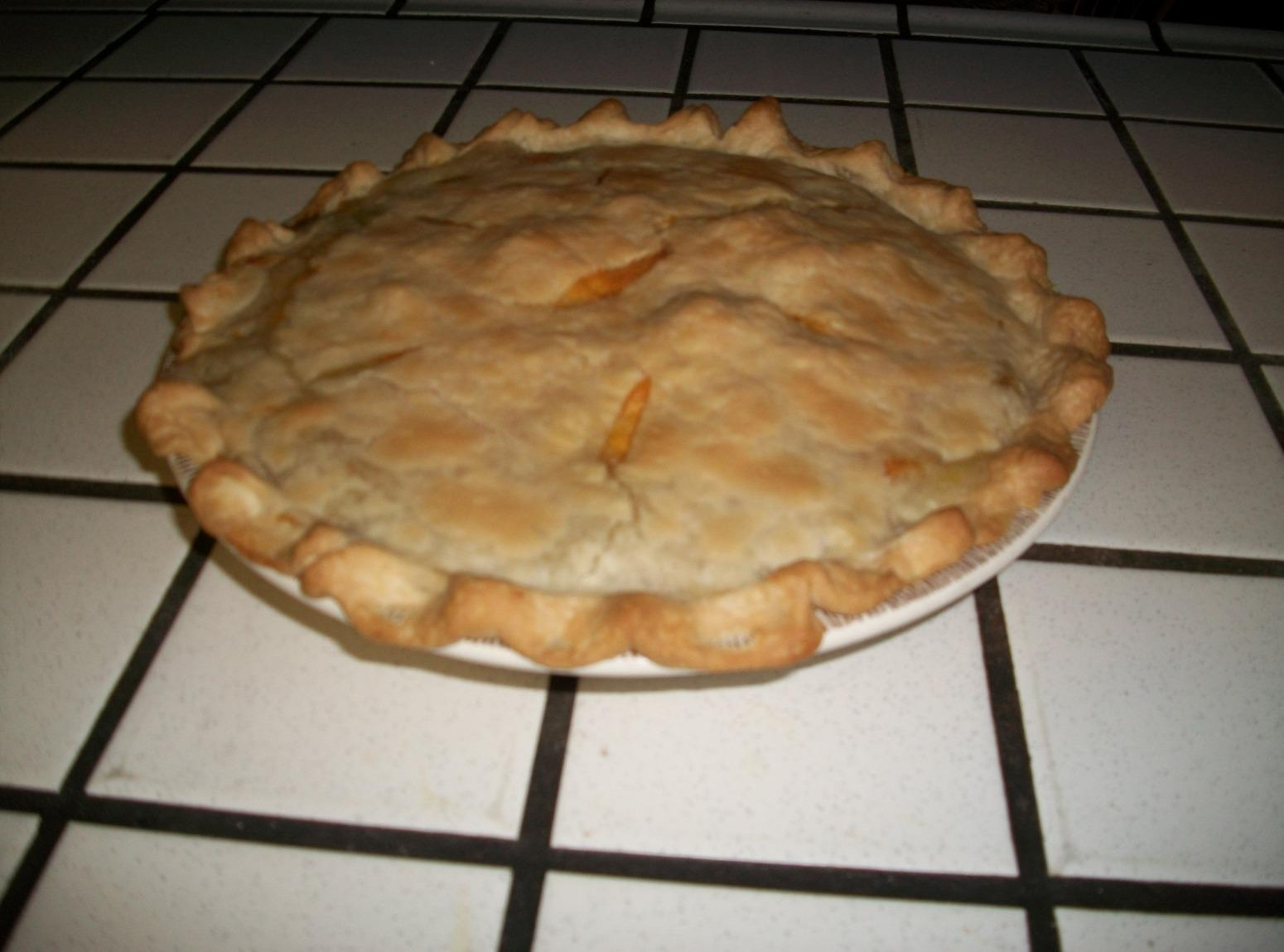OH SO GOOD HOMEMADE CHICKEN POT PIE Recipe | Just A Pinch Recipes