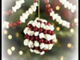 Cranberry-Popcorn Garland Bird Feeder Recipe