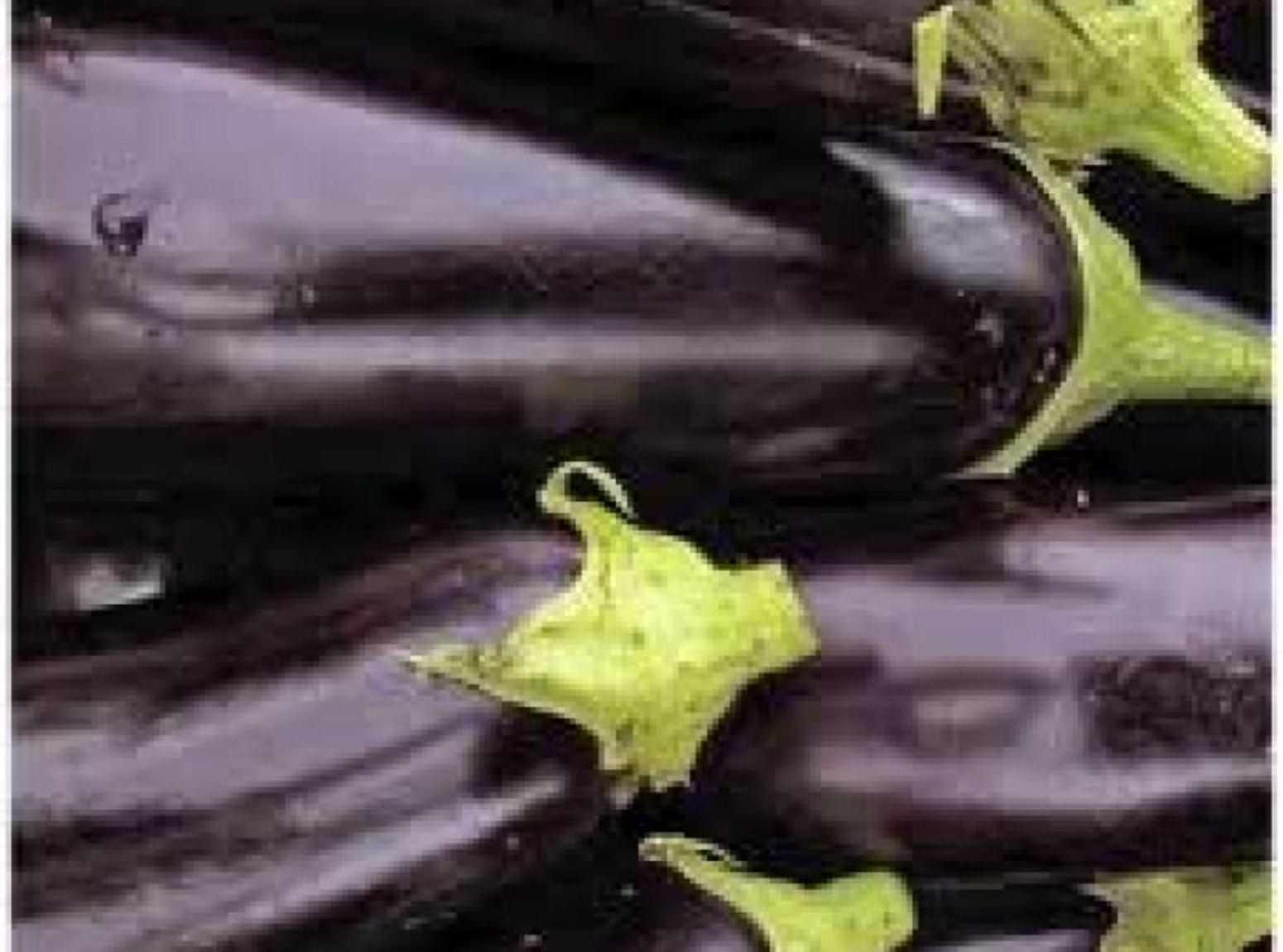 Eggplant Dip Baba Ghannouj Recipe