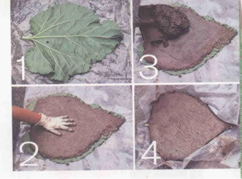 Rhubarb Leaf Stepping Stones Recipe Just A Pinch Recipes