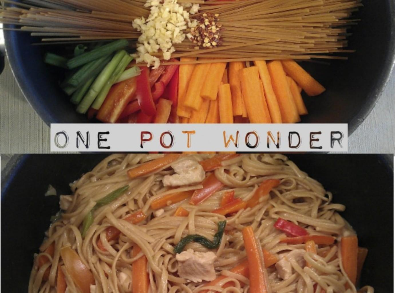 One pot wonder chicken lo mein the wholesome dish recipe for One dish wonders recipes