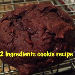 2 Ingredients Chocolate Cookies Recipe