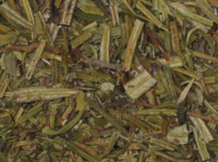 Yerba Santa tea Recipe