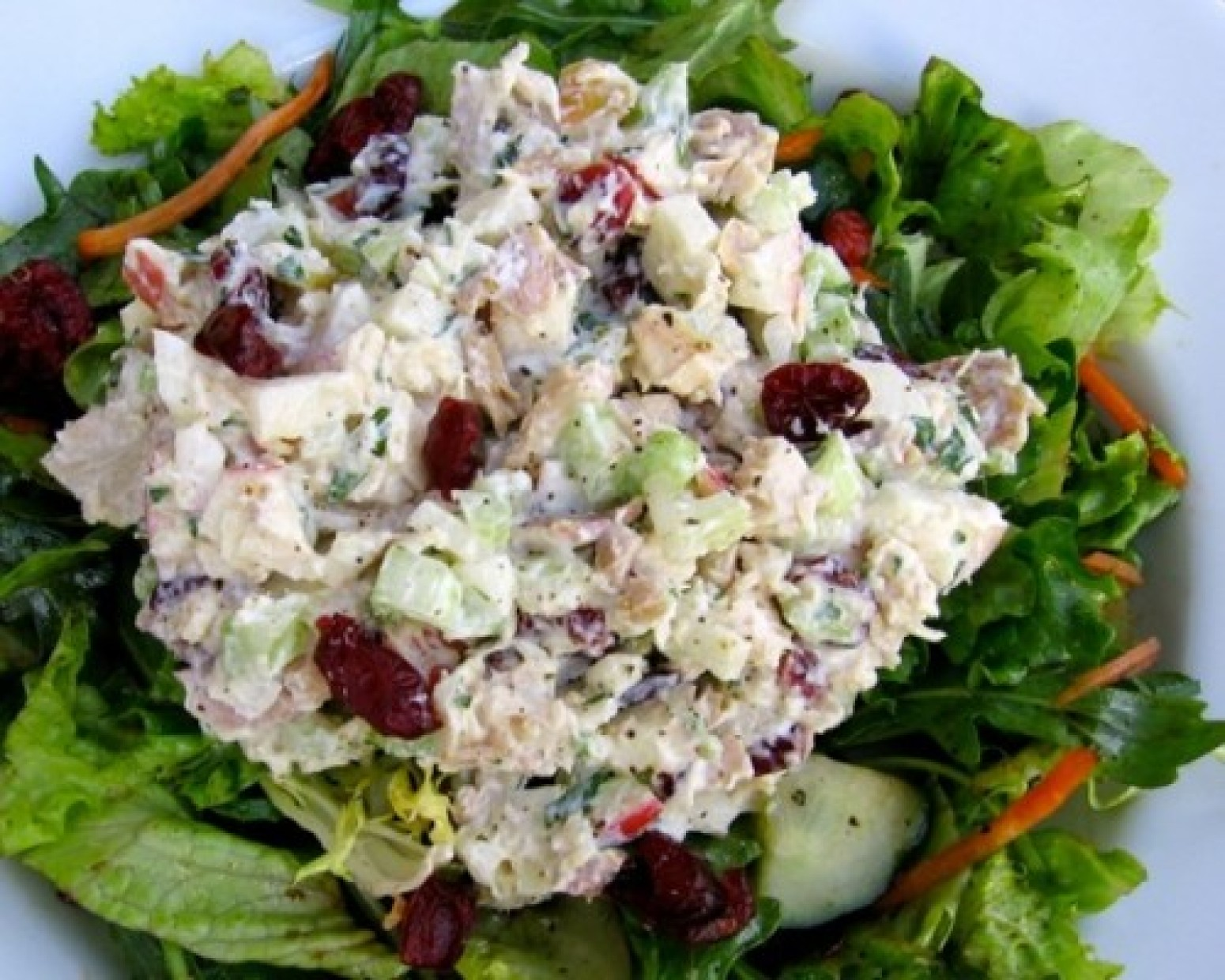 Healthy Chicken Salad With Apples Amp Cranberries Recipe Just A Pinch Recipes