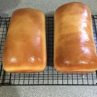 Country White Bread - Bread Machine or Oven Recipe