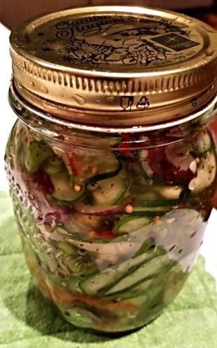 ~ Mixed Cucumber Salad ~ Recipe