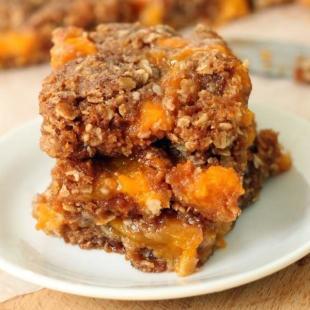 100% Whole Grain Apricot Almond Goo Bars Recipe