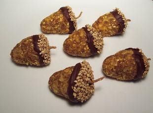 Acorn Bites Recipe