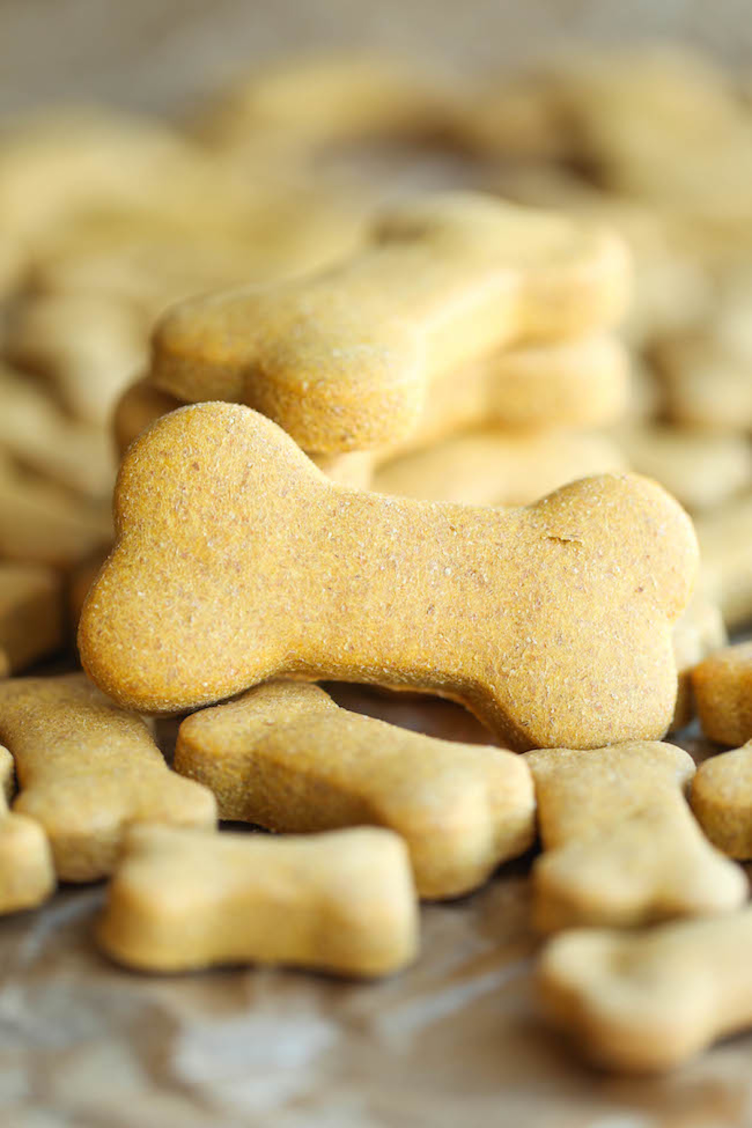 Best Recipe For Homemade Dog Treats