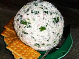 SCALLION & BEEF CHEESE BALL Recipe
