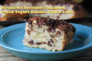 Chocolate Cinnamon Greek Yogurt Banana Coffee Cake Recipe